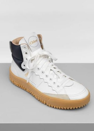Chloé - Trainers - for WOMEN online on Kate&You - CHC20W3924291J K&Y11957