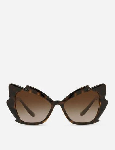 Dolce & Gabbana Sunglasses Gattopardo  Kate&You-ID12704