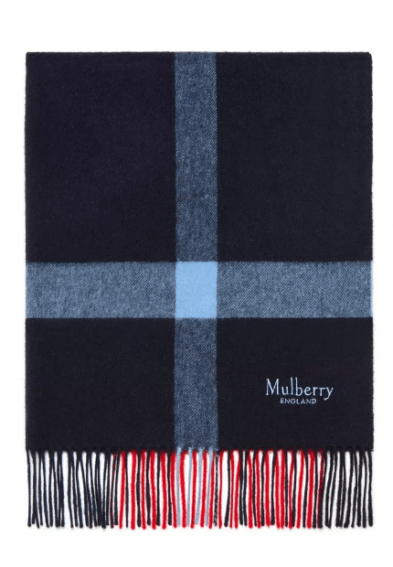 Шарфы - Mulberry для ЖЕНЩИН онлайн на Kate&You - VS4246-774L657 - K&Y6817