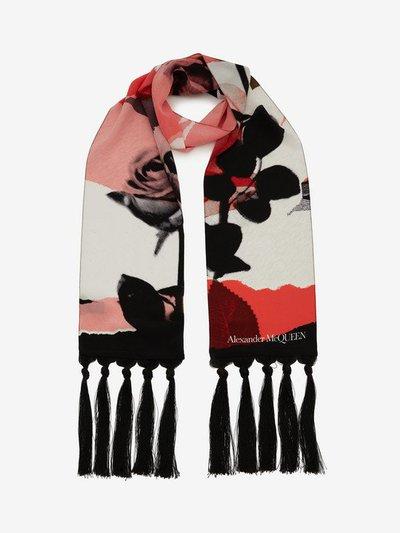 Alexander McQueen - Sciarpe & Foulards per DONNA online su Kate&You - 5845173005Q1078 K&Y3978