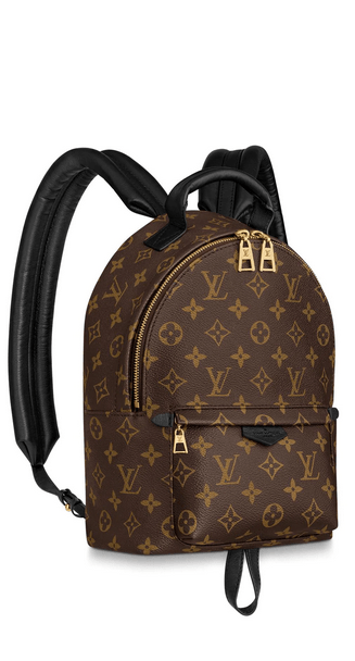 Louis Vuitton Backpacks Palm Springs PM Kate&You-ID8742