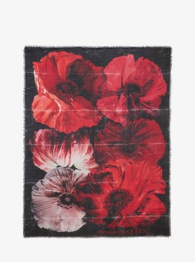 Alexander McQueen Scarves Kate&You-ID12671