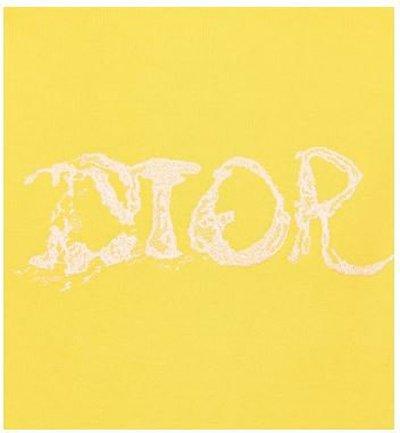 Dior - Sweatshirts - for MEN online on Kate&You - 143J683B0531_C280 K&Y11382